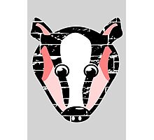Cute Badger Face Photographic Print