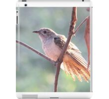 Brush Cuckoo  iPad Case/Skin