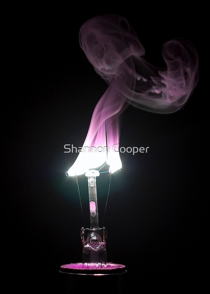 Blaze by Shannon Beauford