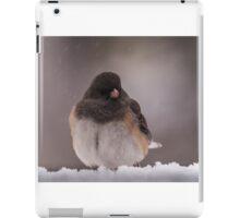 Dark-Eyed Junco in the snow iPad Case/Skin