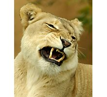 What a funny face. Photographic Print