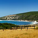 Rolling hills and the ocean by Geoff White