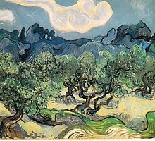 Olive Trees by Vincent van Gogh. Famous landscape oil painting. Van Gogh's unique swirling painting style. by naturematters