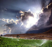 Spray The Light We Spray The Water by Tony Elieh