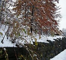Sixth Street Embankment in Snow, Abandoned Pennsylvania Railroad Embankment, Jersey City, New Jersey by lenspiro