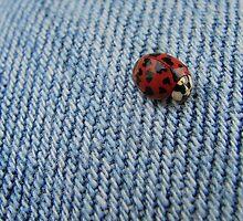 Lovebug! by Jamie Lee