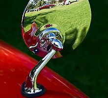 Jaguar show reflected by Celeste Mookherjee