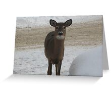 I bet you blink first!!! Greeting Card