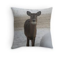 I bet you blink first!!! Throw Pillow