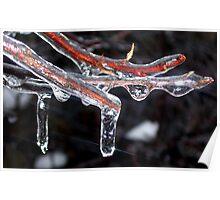 Winter Jewels Poster