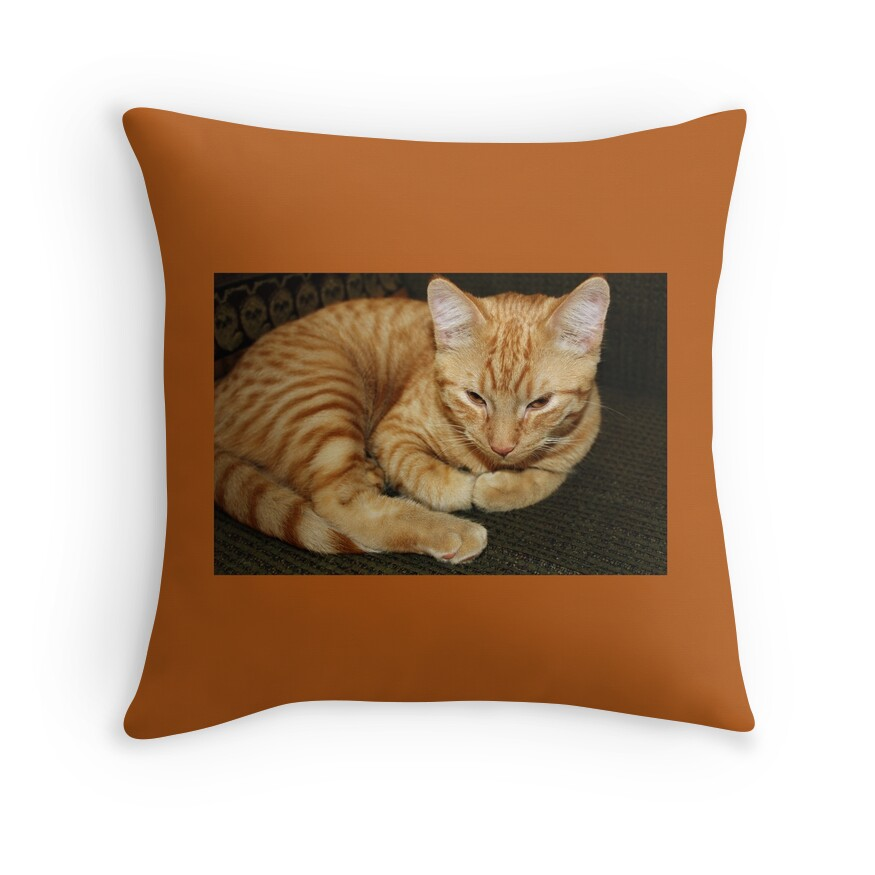 Kitty Throw Pillow :