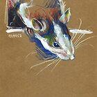 Ketamine the rat by Anaïs Chesnoy