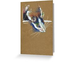Ketamine the rat Greeting Card
