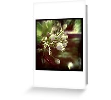 MEMORY Greeting Card