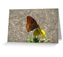 butterfly on Pansy Greeting Card