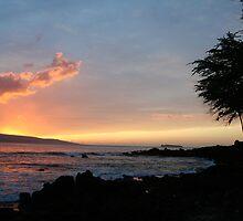 Makena Beach Maui by Ryan Nowell