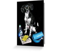 Doggy Wash Greeting Card