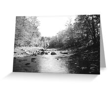 Vermont Trout Stream Greeting Card