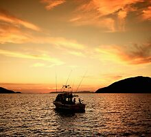Offshore Fishing, Port Stephens, Australia by Paul Foley