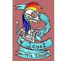 Loyal 'Til Death MLP Rainbow Dash Photographic Print