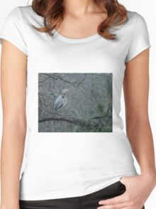 Blue Heron in a Tree Women's Fitted Scoop T-Shirt