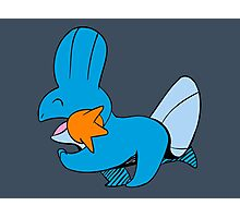 Cute Walking Mudkips Photographic Print