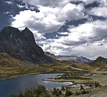 Peruvian Oasis by Nikki Moore