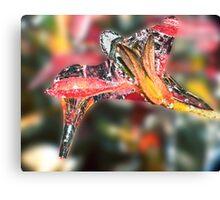 Hummingbird Icicle ! Canvas Print