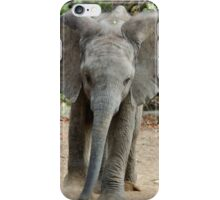 DON'T COME ANY CLOSER! -THE AFRICAN ELEPHANT – Loxodonta Africana iPhone Case/Skin