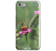 Butterfly on Zinnia iPhone Case/Skin