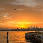 A Cockatoo Sunrise by Steve Randall