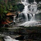 The Journey - Leura Cascades, Blue Mountains, NSW by Kim Roper