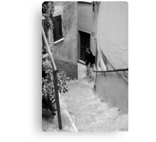 street stair Canvas Print