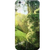 Sunrise on the trail iPhone Case/Skin