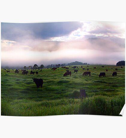 Mooning - Kangaroo Valley, NSW Australia Poster