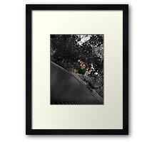 Jumping Framed Print