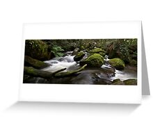 Taggerty's River Greeting Card