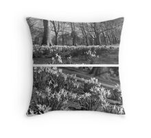 Riverside Daffodils in Bedford Throw Pillow