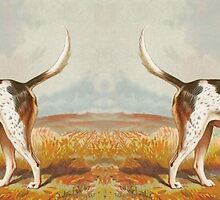 Perky Foxhound by spotz