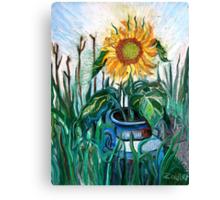 August Sunflower Canvas Print