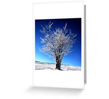 Blue Powder  Greeting Card