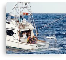 Calypso Hooked Up Canvas Print