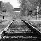 Rural Tracks by bluekrypton