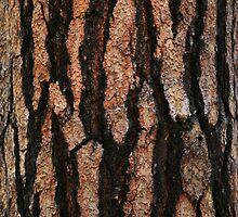 Tree Trunk by Natasha Dirty Boots