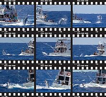 Marlin Boat Montage by blackmarlinblog
