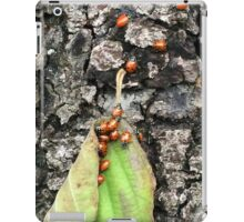 Yosemite Ladybugs in Leaf iPad Case/Skin