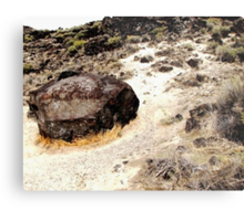 Map Rock Metal Print