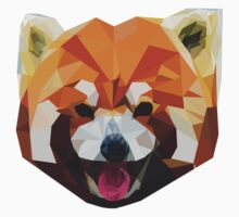 Red Panda Tee Shirt Kids Clothes