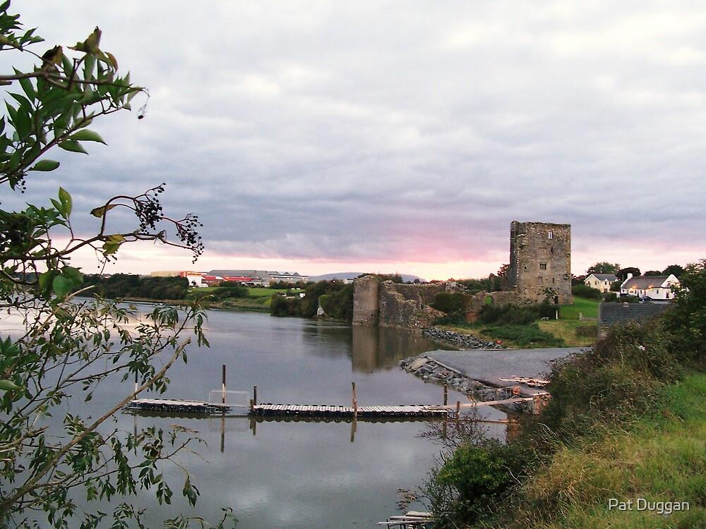 Granny Castle, Co. Waterford, Ireland by Pat Duggan