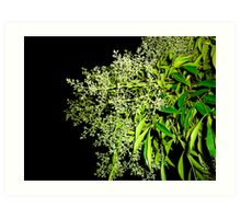 GREEN IN THE HIGHT Art Print